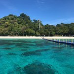 4 Islands Day Tour by Opal Travel Speed Boat Foto