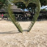 Фотография The Island View Restaurant