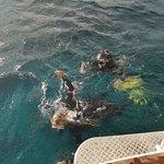 Photo of PPK Plongee Guadeloupe