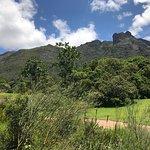moyo Kirstenbosch의 사진