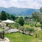 Photo of La Valle dell'Ortica