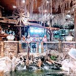 What an awesome Bass Pro shop. Great racing museum, gun museum, awesome store!