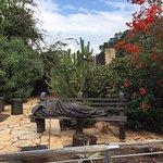 תמונה של גן לאומי כפר נחום