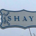 Shayaの写真