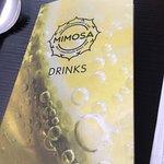 Foto Mimosa
