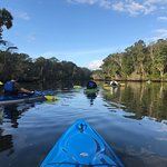 Peacefully kayaking along the river