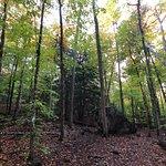 Camden Hills State Parkの写真