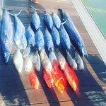 Fishing Trip...
