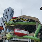 Ripley's Believe It or Not! Baltimore Foto