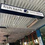 ภาพถ่ายของ Fish Tank