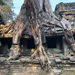 Photo of Angkor Wat Day Tour