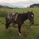 Photo of Horse riding in cusco Gabriel's Ranch