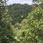 Foto de Mindo Cloud Forest Day Tours