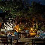 Jua restaurant under the giant baobab