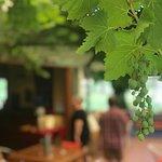 Billede af di Lusso Estate Winery