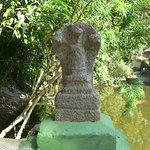 Foto de Mannarasala Sree Nagaraja Temple