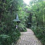 Photo of Deutscher Wald / Bosque Alemao