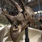 Billede af National Museum of Scotland