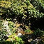 Foto van Gouden Paviljoen (Kinkaku-ji)