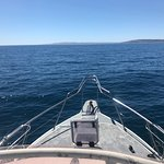 Emu Bay Fishing Charters - Private Charters照片