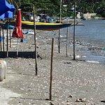 Φωτογραφία: Mui Ne Harbor