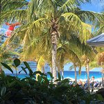 Foto de Jimmy Buffett's Margaritaville Grand Turk