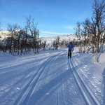 Bilde fra Beito Aktiv & Skiskole