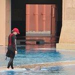 Foto de Dolphin Bay