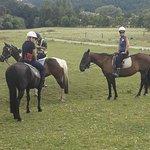 Foto de Horse Riding Warkworth