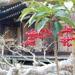 صورة فوتوغرافية لـ Joruri Temple