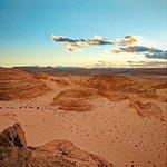 Billede af Sinai Safari - Day Tours