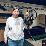 Фотография Riverside Falconry