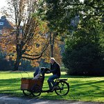 A resident enjoying the park