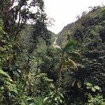 Carbet Falls (Les Chutes du Carbet) Foto