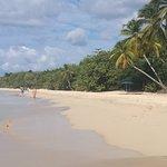 Photo de Grande Anse des Salines