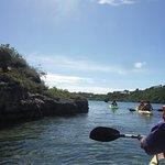 Foto de Paddles Snorkel and Kayak Eco Adventure