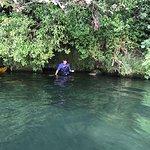 Foto de Waimarino Adventure Park