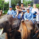Photo of Elephant Safari Park