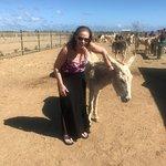 Foto van Donkey Sanctuary Bonaire