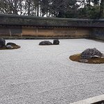 The Zen Rock Garden