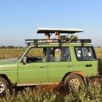 African Adventure Travellersの写真