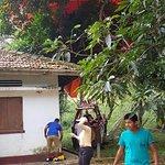 Foto de Lanka Ballooning Pvt Ltd