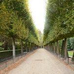 Parc de Sceauxの写真