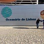 Oceanário de Lisboa Foto