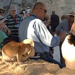 Tour guide and the cat-in-the-hat before we ascend to the acropolis in Lindos