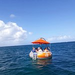 Renting a Boat in Aruba Octopus Aruba offer rental boats and all equipment needed to have a day of fun on the water. Boat rentals are typically short term; an morning, afternoon or a day at the most. The rental boats are easy to operate.