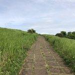 Photo de Campuhan Ridge Walk