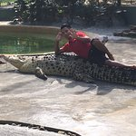 Photo of Crocodile Adventureland Langkawi