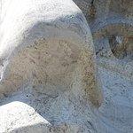 Closeup of Washington's Nose & Eye