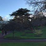 Photo of Royal Botanic Garden Edinburgh